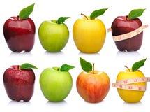 Apple samling Royaltyfri Fotografi