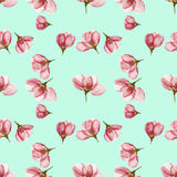 Apple. Seamless pattern texture of flowers. Floral background, p Stock Photos
