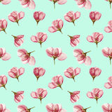 Apple. Seamless pattern texture of flowers. Floral background, p Royalty Free Stock Photo