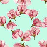 Apple. Seamless pattern texture of flowers. Floral background, p Stock Photography