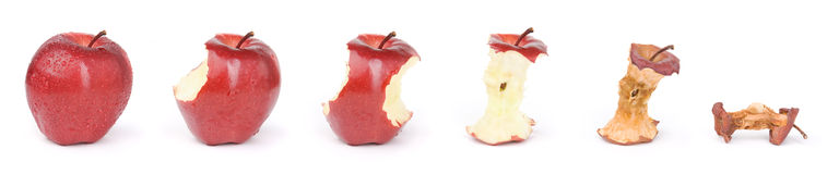 Apple in a sequence. Combine six photo of the same apple in different condition, no color manipulation and saturation added because this picture taken by Stock Photography
