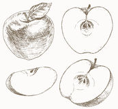 Apple set. Stock Image
