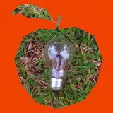 Bulb light. Apple-shaped with one bulb light on grass texture inside on golden orange backround royalty free stock photo