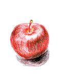 Apple sketch Stock Photo