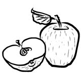 Apple Sketched Outline Vector Illustration Royalty Free Stock Photo
