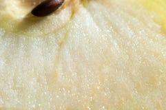 Apple slice texture Stock Image