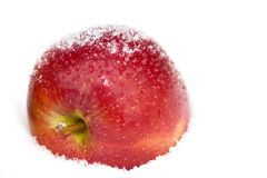 Apple in snow Royalty Free Stock Photo