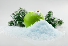 Apple in snow. Green delicious Christmas apple in snow with christmas tree branches on the background Royalty Free Stock Photos