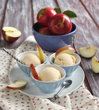 Apple sorbet. And fresh apples Stock Image