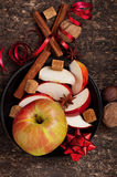 Apple and spices Royalty Free Stock Photography