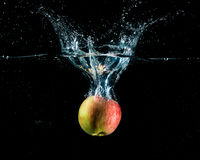 Apple with splash Stock Image