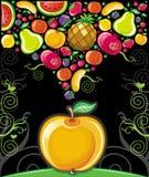 Apple splash ( fruit series) vector illustration