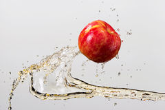 Apple and splash of juice isolated on gray background.  stock images