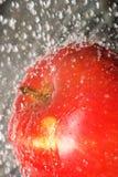 Apple splashing water. Fresh water splashing on apple Royalty Free Stock Photography