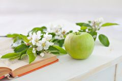 Apple with sprig book Stock Photos
