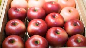 Apple sprzedawał w supermarketach zdjęcia stock
