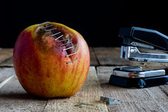 Apple with stapler Stock Photography