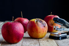Apple with stapler Royalty Free Stock Photos