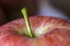 Apple stem. Green apple stem in focus on blurred red apple Royalty Free Stock Image