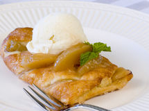 Apple Strudel. Fresh apple strudel topped with vanilla ice cream, garnished with fresh mint sprig served on white plate royalty free stock image