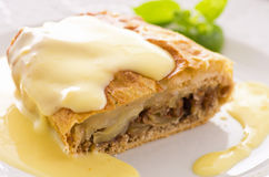 Apple Strudel with Vanilla Sauce. As closeup on a white plate Royalty Free Stock Photos