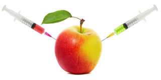 Apple stuck with syringe, Concept of genetic modification of fruits Stock Image