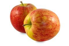 Apple studio photo Stock Images