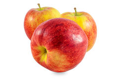 Apple studio photo Stock Image