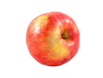 Apple studio photo Royalty Free Stock Photo