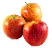 Apple-Studiofoto Lizenzfreie Stockfotos