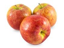 Apple-Studiofoto Lizenzfreie Stockfotografie
