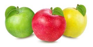 Apple su bianco Fotografie Stock