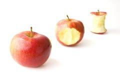 Apple sugoso che Munching fotografia stock libera da diritti