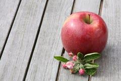Apple sulla tavola di legno Fotografia Stock