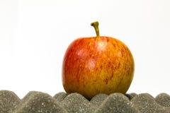 Apple sur la mousse Photo libre de droits