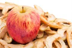 Apple sur un lit des pommes sèches Image libre de droits
