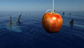 Apple surrounded by Sharks Stock Image