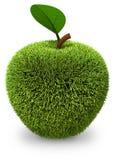 Apple täckte med grönt gräs Royaltyfria Foton