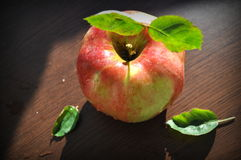 Apple on the table Royalty Free Stock Image