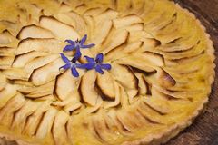 Apple Tart. A homemade tart, with carmelized apple slices and creamy custard in a pastry crust, is garnished with borage flowers. Soft focus on edges Royalty Free Stock Image