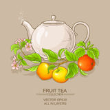 Apple tea in teapot. On color background Stock Images