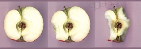 Apple Temptation. Apple being eaten royalty free stock photography