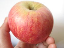 Apple ter beschikking Stock Foto