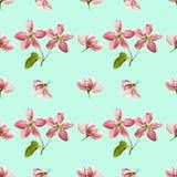 Apple Texture sans couture de modèle des fleurs Fond floral, p Photo libre de droits