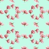 Apple Texture sans couture de modèle des fleurs Fond floral, p Photo stock