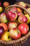 Apple time. Cart Polish apples - natural and ecological Royalty Free Stock Image