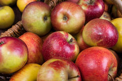 Apple time. Cart Polish apples - natural and ecological Royalty Free Stock Photo