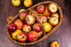 Apple time. Cart Polish apples - natural and ecological Stock Images