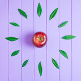 Apple of time Royalty Free Stock Photo