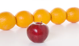 Apple to Oranges. Oranges arranged to illustrate the concept of people lining up end to end while the apple stands alone like an independent, confident leader stock photography